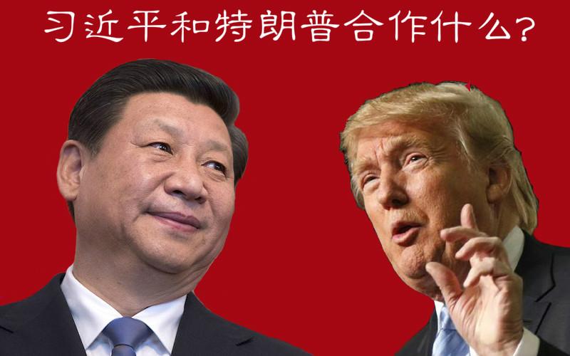 长平: 习近平和特朗普合作什么?|德国之声中文网